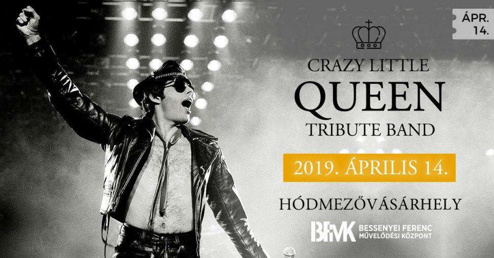 A képen Freddie Mercury énekes látható.